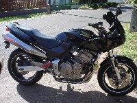 hondahornet600