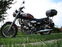 triumph900
